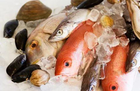 Купить морскую рыбу оптом